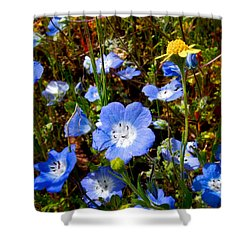 Goldfields And Baby Blue Eyes In Park Sierra-ca Shower Curtain by Ruth Hager