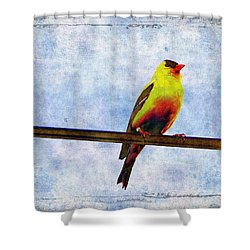 Goldfinch Shower Curtain by Cassie Peters