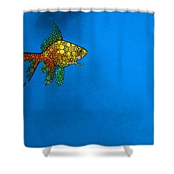 Goldfish Study 4 - Stone Rock'd Art By Sharon Cummings Shower Curtain by Sharon Cummings