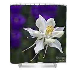 Goldilocks And The Bells Shower Curtain