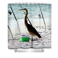 Shower Curtain featuring the photograph Gone Fishing by Debra Forand
