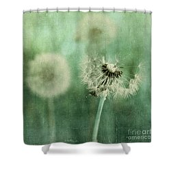 Gone Shower Curtain by Priska Wettstein