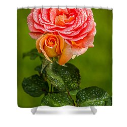Good Morning Beautiful Shower Curtain by Ken Stanback