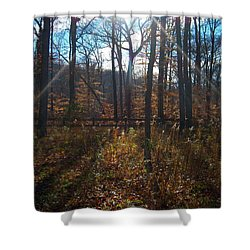 Good Morning Shower Curtain by Pamela Clements