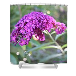 Good Morning Purple Butterfly Bush Shower Curtain