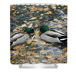 Shower Curtain featuring the photograph Good To Talk by Katy Mei