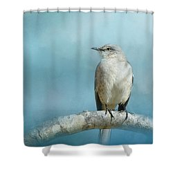 Good Winter Morning Shower Curtain by Jai Johnson