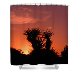 Goodevening Star Shine Shower Curtain