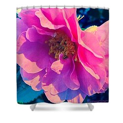 Goodnight Pink Camellia Shower Curtain by Anna Porter