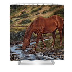 Good'ol Red Shower Curtain
