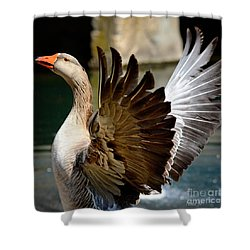 Goose Feathers Shower Curtain