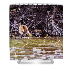 Goose On The Loose Shower Curtain by Omaste Witkowski