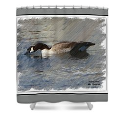 Goosey Lucy Painting Shower Curtain