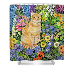 Gordon S Cat Shower Curtain