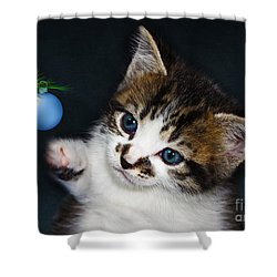 Gorgeous Christmas Kitten Shower Curtain