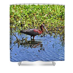Gorgeous Glossy Shower Curtain by Al Powell Photography USA