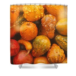 Shower Curtain featuring the photograph Gorgeous Gourds by Ira Shander