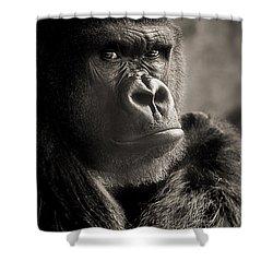 Gorilla Poses I Shower Curtain