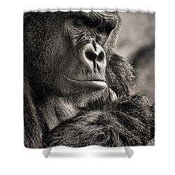 Gorilla Poses II Shower Curtain