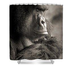 Gorilla Poses Iv Shower Curtain