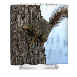 Lookin' For Nuts Shower Curtain