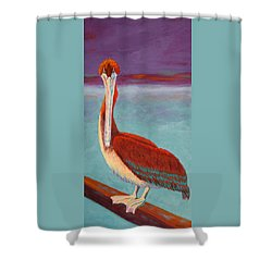 Got Fish? Shower Curtain by Nancy Jolley