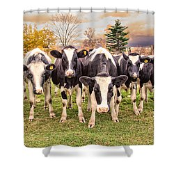 Got Grain? Shower Curtain