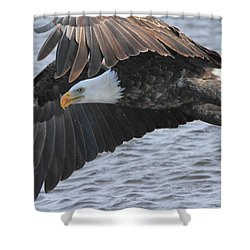 Shower Curtain featuring the photograph Got My Eye On You by Coby Cooper