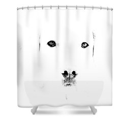 Dog Face Shower Curtain by Mike Santis