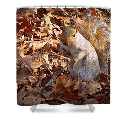 Got Nuts Shower Curtain
