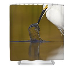 Shower Curtain featuring the photograph Gotcha by Bryan Keil