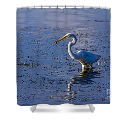 Gotcha Shower Curtain by Marvin Spates