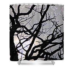 Goth Tree Shower Curtain by First Star Art