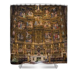 Gothic Altar Screen Shower Curtain by Joan Carroll