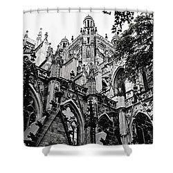 Gothic Cathedral Of Den Bosch Shower Curtain by Carol Groenen