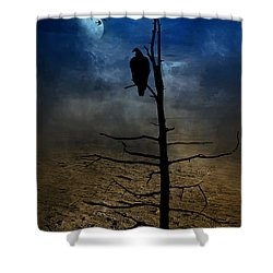 Gothic Landscape  Shower Curtain by Andrea Kollo