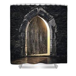 Gothic Light Shower Curtain