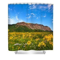Gothic Meadow Shower Curtain by Darren  White