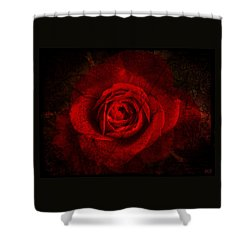 Shower Curtain featuring the digital art Gothic Red Rose by Absinthe Art By Michelle LeAnn Scott