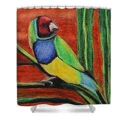 Shower Curtain featuring the painting Gouldian Finch by Jeanne Fischer