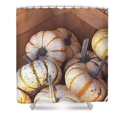 Gourd Harvest Shower Curtain by Denyse Duhaime