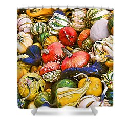 Gourds And Pumpkins At The Farmers Market Shower Curtain by Peggy Collins