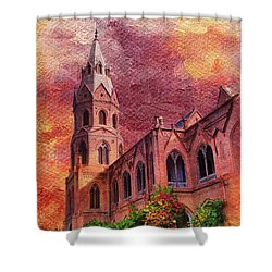 Government College Lahore Shower Curtain by Catf
