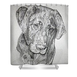 Gozar Shower Curtain