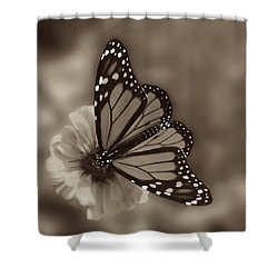 Grace Shower Curtain by Don Spenner
