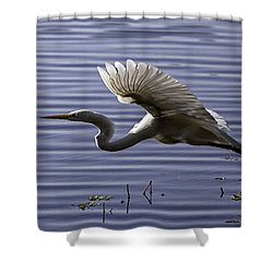 Grace In Motion Shower Curtain by Lynn Palmer