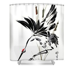 Grace Of Descent Shower Curtain