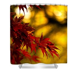 Graceful Leaves Shower Curtain