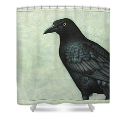 Grackle Shower Curtain by James W Johnson