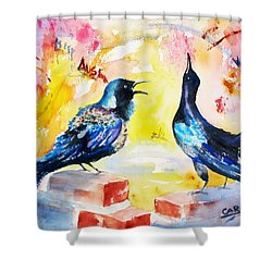 Grackles And Graffiti  Shower Curtain